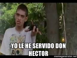 Hector Meme - yo le he servido don hector yoleheservidodonhectorzarco meme