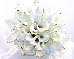 calla lilies bouquet calla bouquets beautiful calla lilies bouquets from