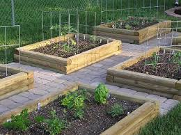 use pressure treated wood for raised garden beds prowood lumber