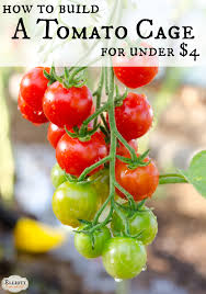 how to build a tomato cage for under 4 the elliott homestead