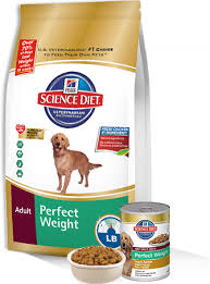 dog diet food food recipe