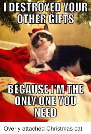 Christmas Cat Memes - i destroyed your other gifts because im the only one you need overly