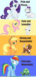Know Your Meme Brony - image 207173 my little pony friendship is magic know your meme