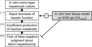 acetaminophen induced hepatotoxicity in a liver tissue model