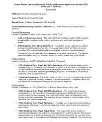 standard resume exles computer teaching hvac cover brain drain essay