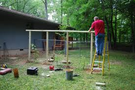 how to build a grape trellis arbor how to build a grape trellis