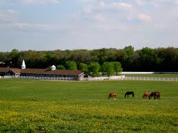 the best places to horse in the usa