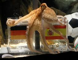 Seeking Octopus Paul The Octopus S World Cup Prophesies