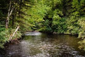 Namekagon River Map 2016 Paddle Namekagon River Day 1 U2013 Wild U0026 Scenic Paddles U2013 St