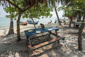 Monkey Bench Monkey Beach And Tropical Forest Penang Cruisebe