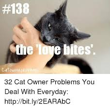 Cat Problems Meme - 138 the lore bites catownep 32 cat owner problems you deal with