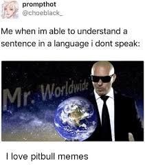 Pitbull Meme - 25 best memes about pitbull memes pitbull memes