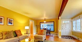 Living Room Wall Paint Ideas Wall Painting Designs For Living Room Coma Frique Studio