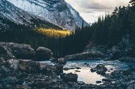 wallpaper tumblr forest mountains rock water nature tumblr mather nature landscape