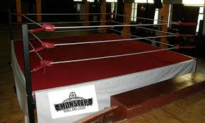 wrestling ring images reverse search