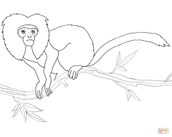 golden lion tamarin coloring page free printable coloring pages