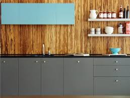 15 captivating kitchen designs with wood paneled walls rilane