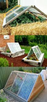 Garden Greenhouse Ideas 21 Diy Greenhouses With Great Tutorials A Of Rainbow