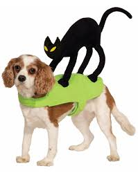 the cutest cat and dog halloween costumes ebay