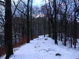 the 25 best when does winter start ideas on poem on