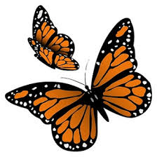 15 simple and butterfly designs with meanings