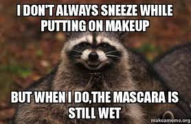 Mascara Meme - i don t always sneeze while putting on makeup but when i do the