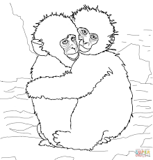 hugging snow monkeys coloring page free printable coloring pages
