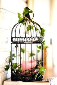 home interior bird cage home decor bird mfbox co