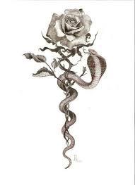 tattoo of a rose best 25 cobra tattoo ideas on pinterest irezumi japanese snake