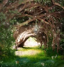 Fairy Lights In Trees by Why Is The Spiritual Path So Hard I Want To Quit Spiritual