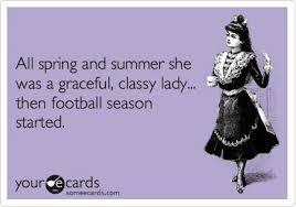 Football Season Meme - college football meme 31 sports fan dog collars