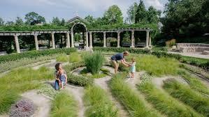 ken saiki design landscape architects