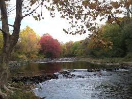 Delaware travel fox images Oct 20 autumn on the delaware pennypack trail philadelphia to jpg