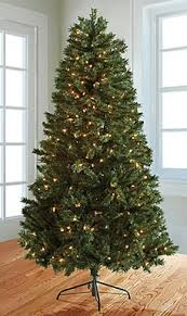 projection christmas lights bed bath and beyond bed bath and beyond k cup deals and free shipping southern savers