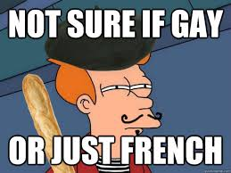 French Meme - not sure if gay or just french french fry quickmeme