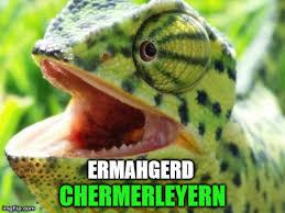 Ermahgerd Meme Maker - cermerflerged imgflip