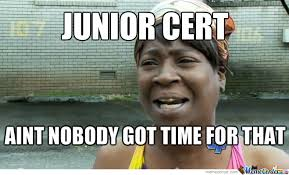 Junior Meme - junior cert by recyclebin meme center