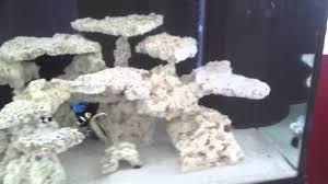 Aquascape Designs For Aquariums How To Aquascape A Reef Aquarium Youtube
