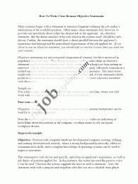 Examples Of Resume Objective Statements by Sample Resume Objective Statements Free Resume Example And