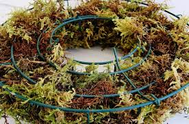 herb wreath living herb wreath thistlewood farm