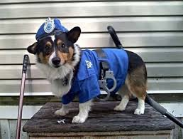 Dog Halloween Costumes Adults Police Dog Pet Costumes Costumes Dog