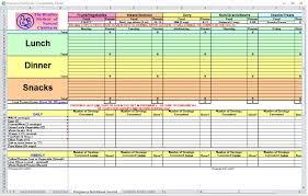 Diet Tracker Spreadsheet Pregnancy Diet Spreadsheet Pregnancy Diet Template