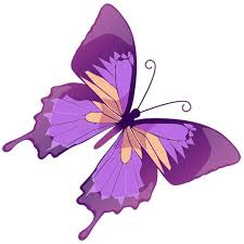 butterfly outline clipart transparent background collection