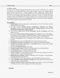 Sample Resume Objectives For Business Analyst by Requirements Analyst Sample Resume