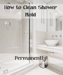 Getting Rid Of Mold In Basement by Best 25 Shower Mold Cleaner Ideas On Pinterest Clean Shower