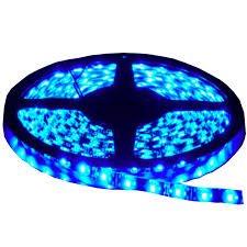 led strip 24w 60 smd 3528 ip65 blue prezzoled