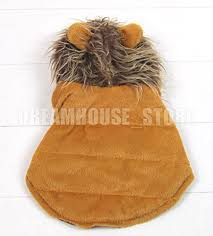 smalllee lucky store pet cat dog clothes brown lion dog pet