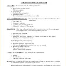 professional resume template accountant cv document sle rare inexperienced resume exles call centre operations manager