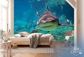 the shark br wall murals shark