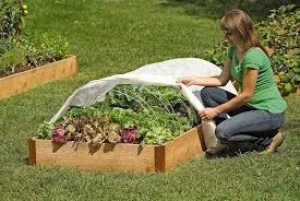 Vegetable Garden Netting Frame by Amazon Com Support Hoops For Garden Fabric Set Of 6 Garden
